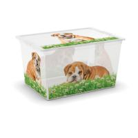C BOX PUPPY GRASS XL 50L